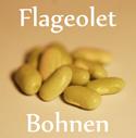 Diese Bohnensorte kommt aus Frankreich und ist dort sehr beliebt. Sie hat eine grünlich-weiße Färbung und ist im Vergleich zu anderen Bohnen eher klein.